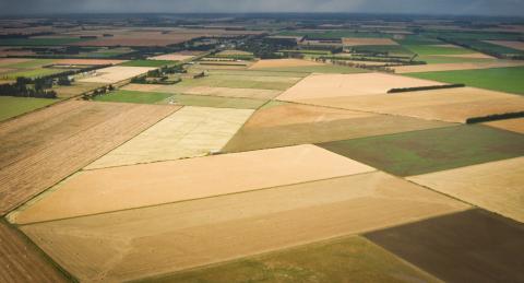 Land Information Memorandum