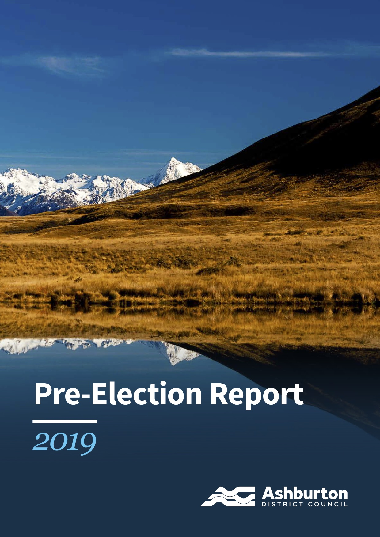 Pre-election report image