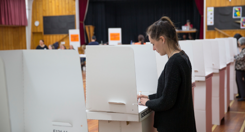 Voting in Local Government Elections